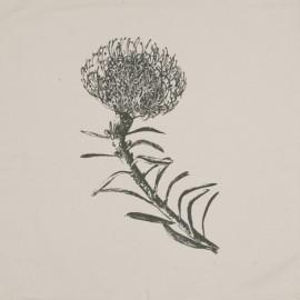 Pincushion – Grey on Cream